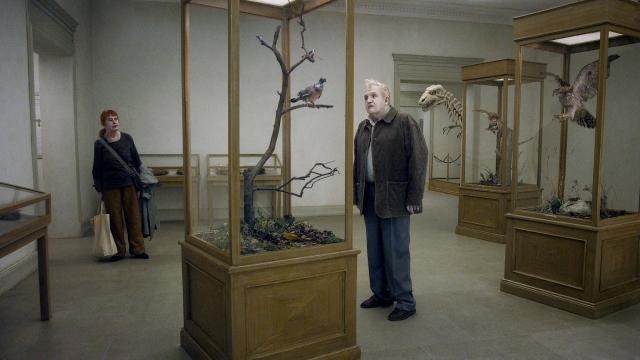 pigeon andersson film venedig